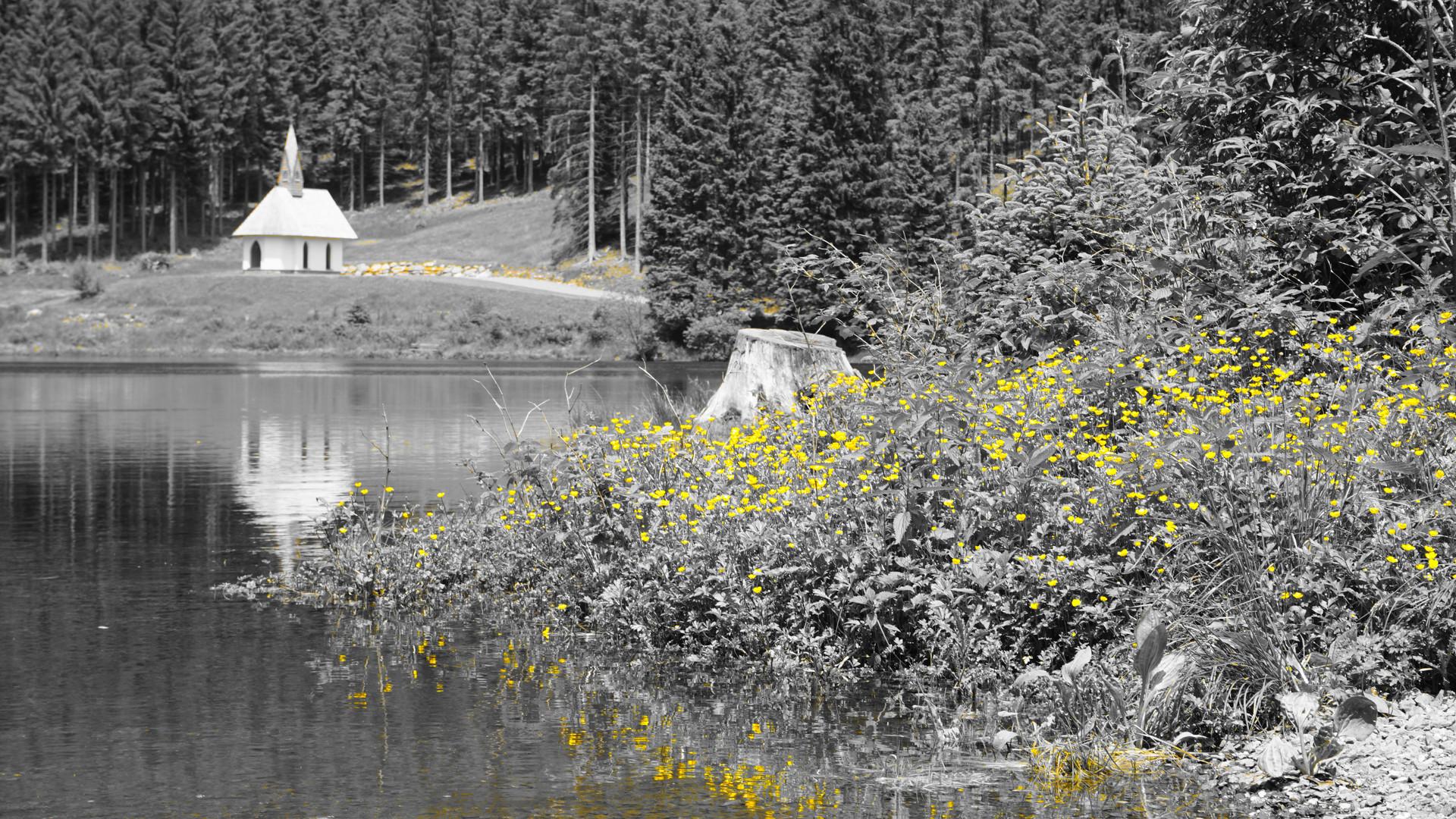 Kleinod und Naturidyll Ingeringsee